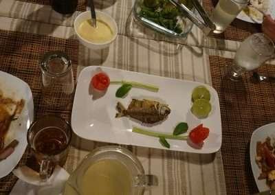 Piranha Gourmet